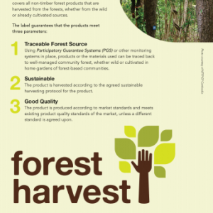 Forest Harvest Brochure